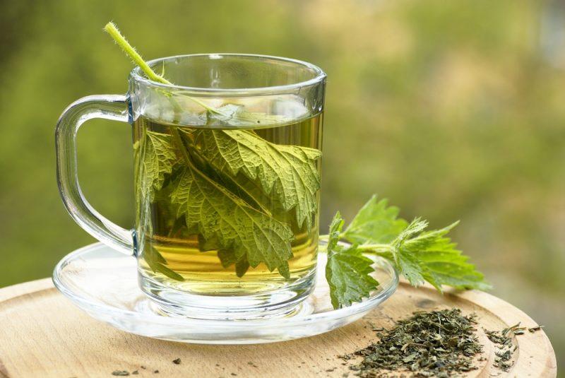 Чай из крапивы рецепт