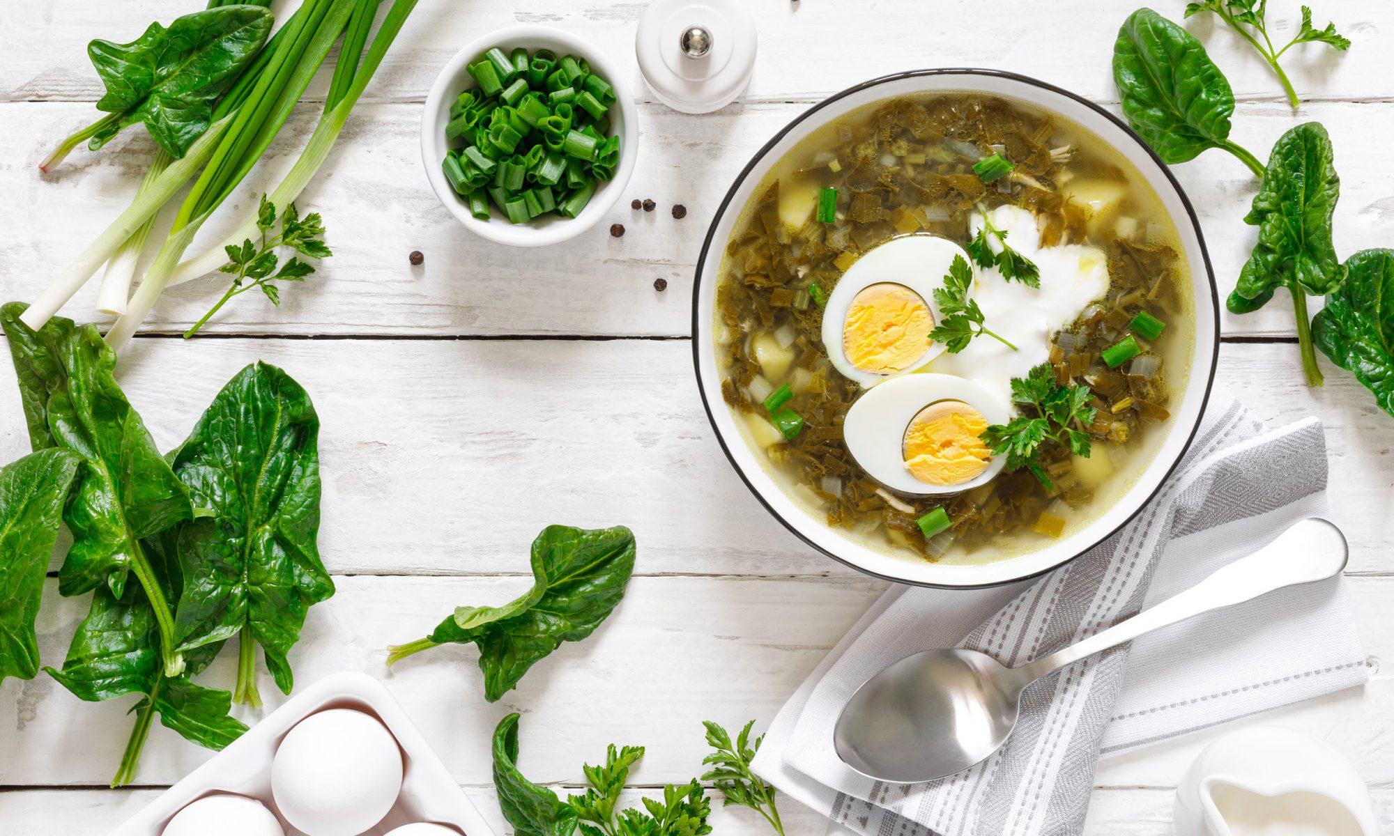 Зеленый борщ: рецепт классического и постного супа