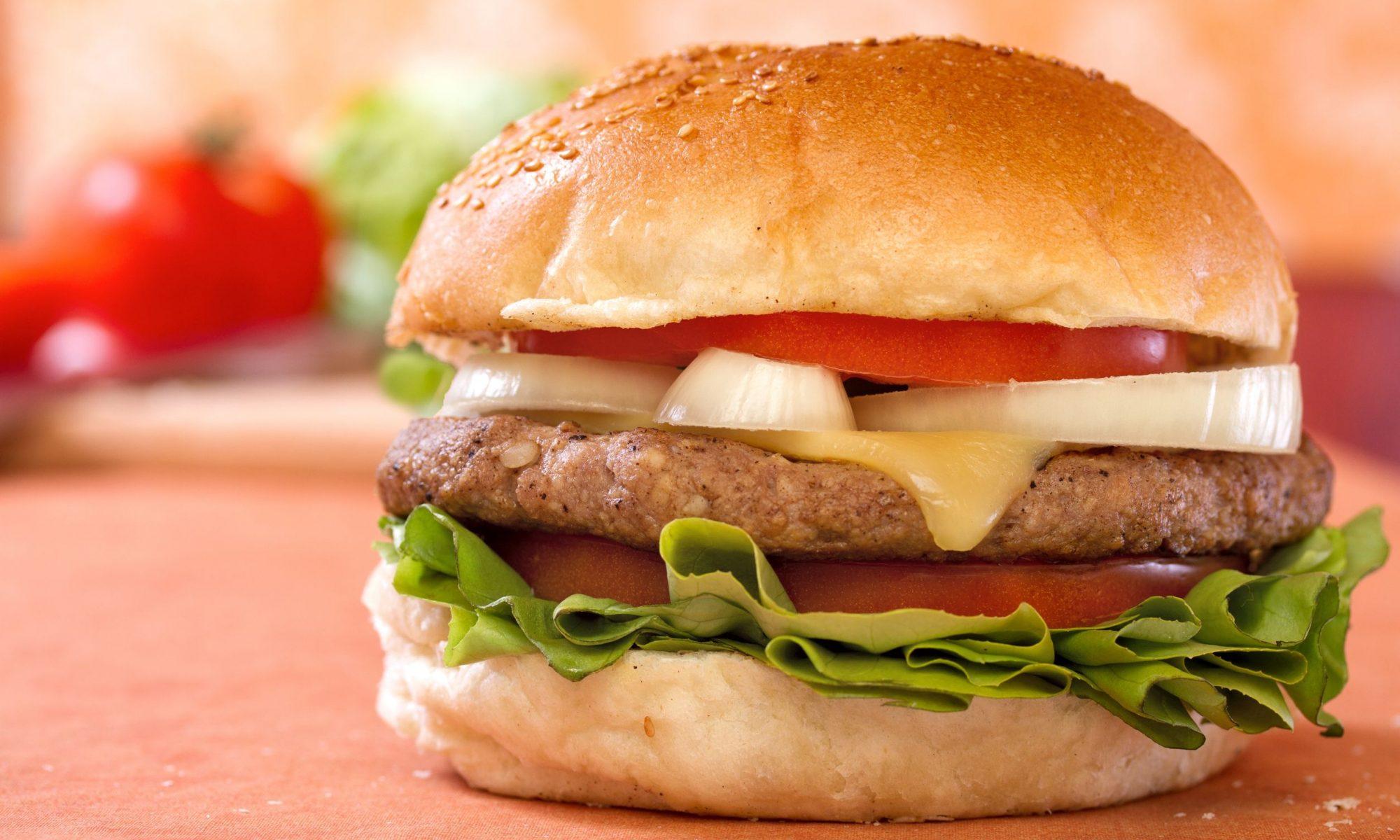 Самая большая коллекция гамбургеров