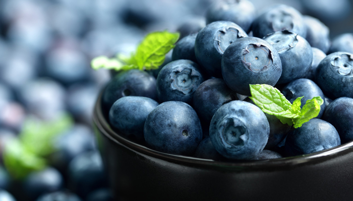 700_blueberry-fresh-berries-yagody-486